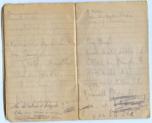 Rosie's notes on the cabaret she helped organize at the reception center in Sweden, 1945