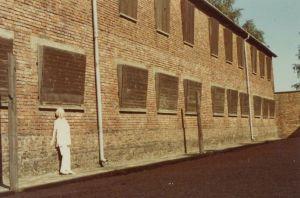 Rosie by experiment block 10 in Auschwitz (photo taken after the war)